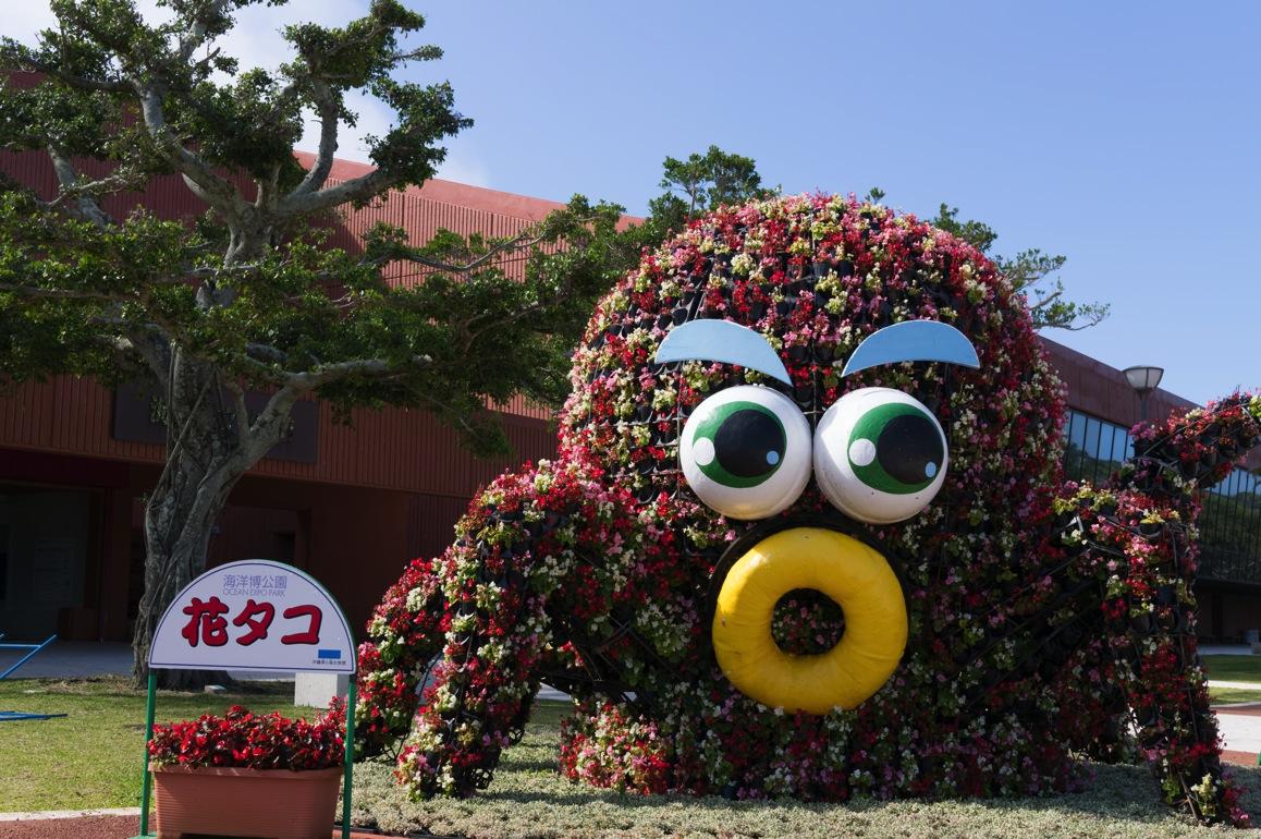 Okinawa 13