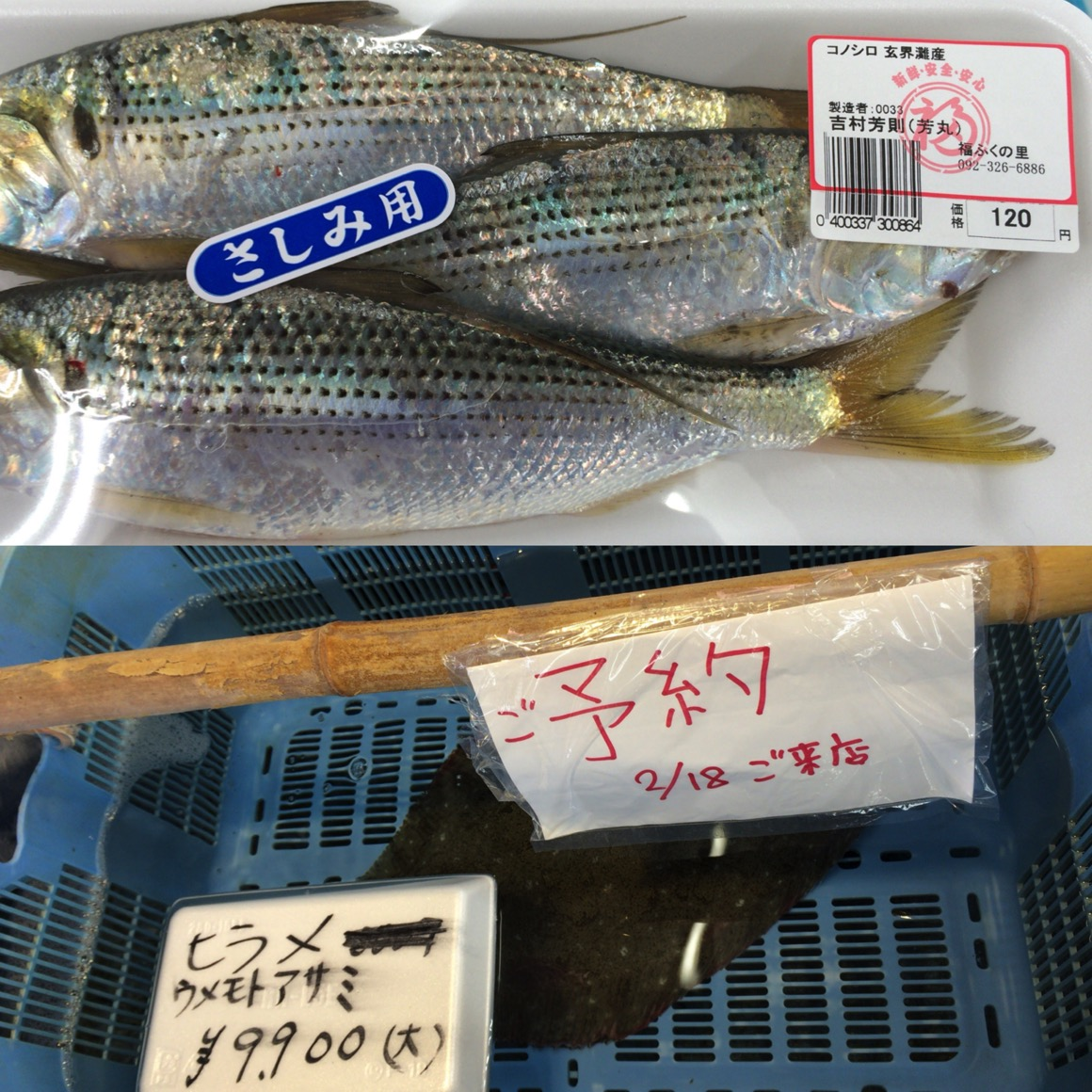 Itoshima55