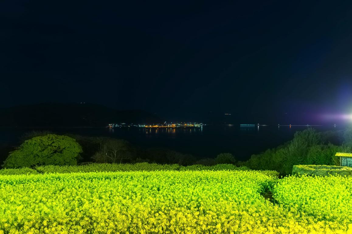 Nokonoshima 61