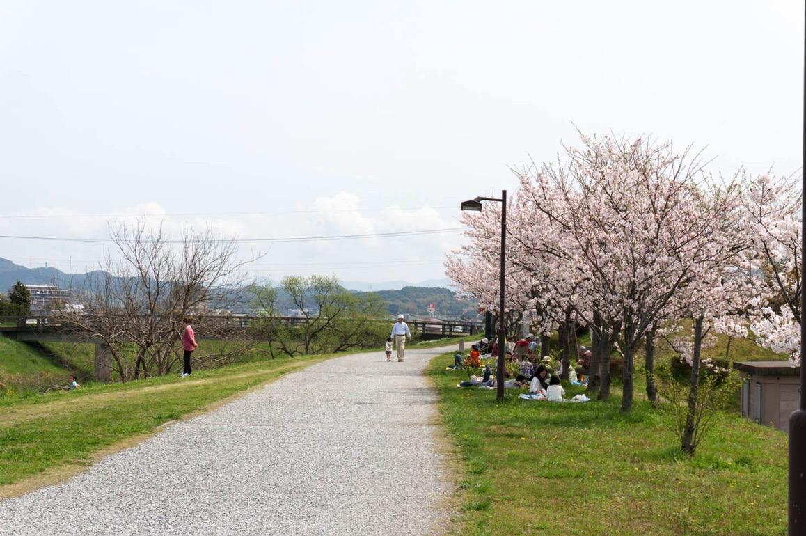Tsurikawazoi 53